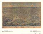 Bird's Eye View of London, Ontario, Canada, 1872