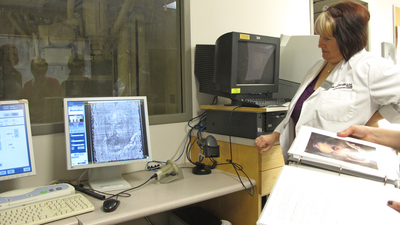 X-rays taken of the museum's painting by the Workshop of Rubens at the IAHS Building at McMaster University