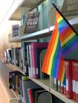 Rainbow in the Shelves