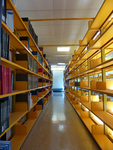 Bright Young Shelves